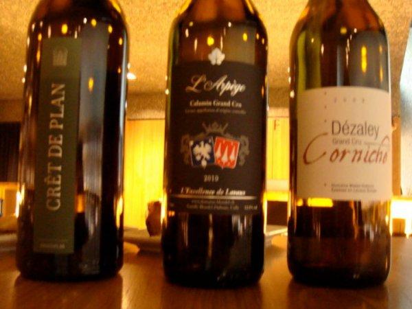 Lavaux Vinorama Wine Tasting