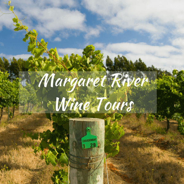 Margaret River Wine Tours – Your Options